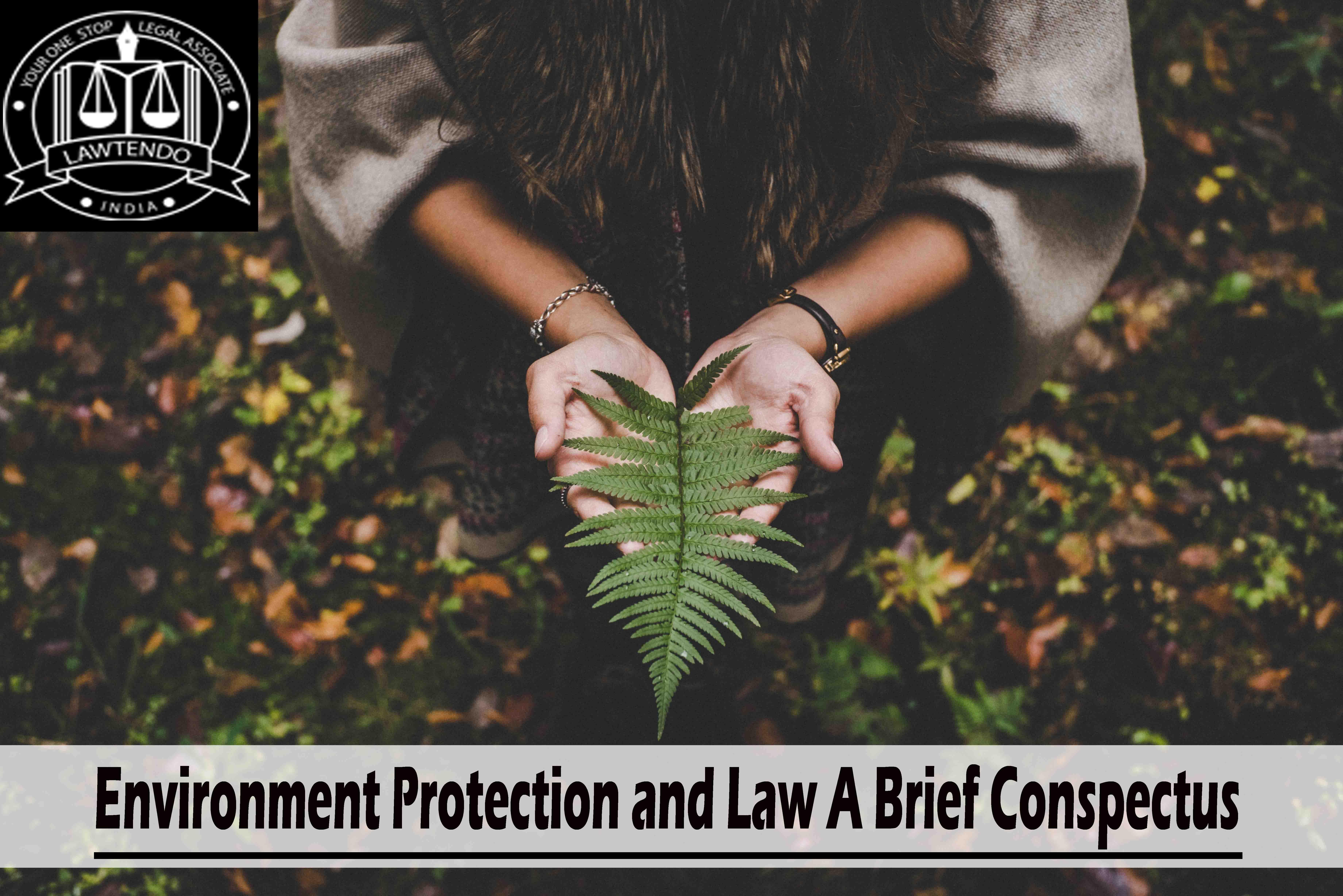 Environment Protection and Law A Brief Conspectus